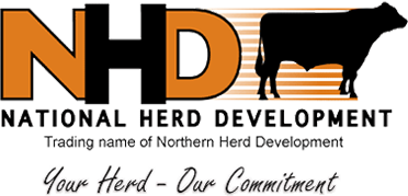 Northern Herd Development Co-Op